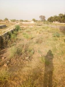 4950 Sq.ft Residential Plot for Sale in Sector 88, Noida