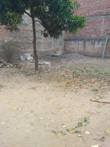 5000 Sq.ft Residential Plot for Sale in Lohia Nagar, Ghaziabad