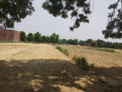 Gallery Cover Image of  Sq.ft Residential Plot for buy in Latif Nagar for 500000