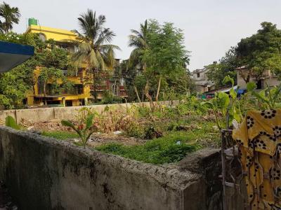 3807 Sq.ft Residential Plot for Sale in New Barrakpur, Kolkata