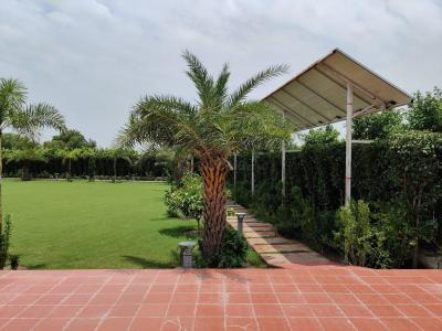 Gallery Cover Image of 2200 Sq.ft 3 BHK Independent House for buy in Dkrrish Green Beauty Farms, Nagli Sabapur for 21000000
