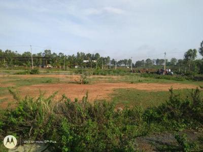 Gallery Cover Image of  Sq.ft Residential Plot for buy in Arakere for 1299000