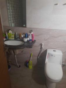 Common Bathroom Image of Girls PG in Noida Extension
