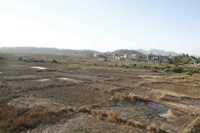 1000 Sq.ft Residential Plot for Sale in Kasarvadavali, Thane West, Thane