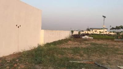 900 Sq.ft Residential Plot for Sale in Sector 75, Noida