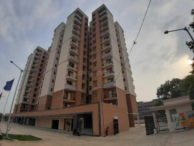 Gallery Cover Image of 525 Sq.ft 1 BHK Apartment for buy in Sector 82 for 1475000
