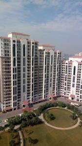 Gallery Cover Image of 1930 Sq.ft 3 BHK Apartment for rent in DLF New Town Heights 3, Sector 91 for 18200