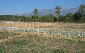 220 Sq.ft Residential Plot for Sale in Kadthal, Hyderabad