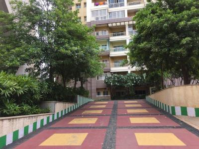 Gallery Cover Image of 2050 Sq.ft 3 BHK Apartment for rent in Mantri Greens, Sheshadripuram for 55000