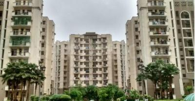 Gallery Cover Image of 1400 Sq.ft 3 BHK Apartment for rent in PI Greater Noida for 16000