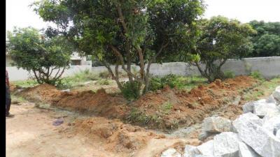 3375 Sq.ft Residential Plot for Sale in Bileshivale, Bangalore