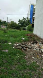645 Sq.ft Residential Plot for Sale in County Walk Township, Indore
