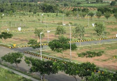 Gallery Cover Image of  Sq.ft Residential Plot for buy in Sector 23 Dharuhera for 3800000
