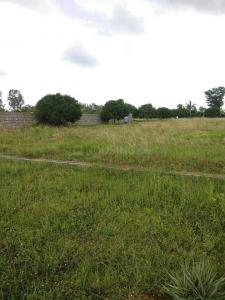 Gallery Cover Image of  Sq.ft Residential Plot for buy in Hosur for 1800000