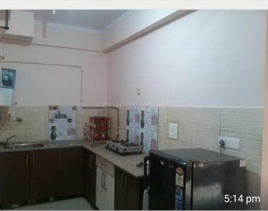 Gallery Cover Image of 1100 Sq.ft 2 BHK Apartment for rent in Gaur Green Vista, Nyay Khand for 19000