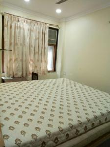 Gallery Cover Image of 600 Sq.ft 1 BHK Apartment for rent in Worli for 80000
