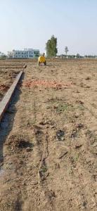 2600 Sq.ft Residential Plot for Sale in Prem Nagar, Dehradun