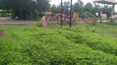 2000 Sq.ft Residential Plot for Sale in Vadgaon Budruk, Pune