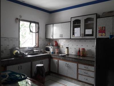Kitchen Image of Best PG in DLF Phase 2