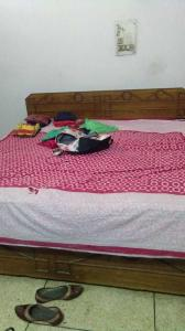 Bedroom Image of Jyoti PG in Sector 17