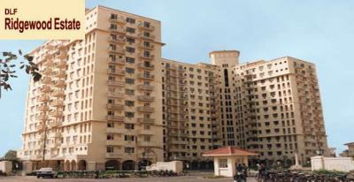 Gallery Cover Image of 1400 Sq.ft 3 BHK Apartment for rent in DLF Phase 4 for 40000
