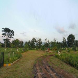 2000 Sq.ft Residential Plot for Sale in Jambrung, Thane