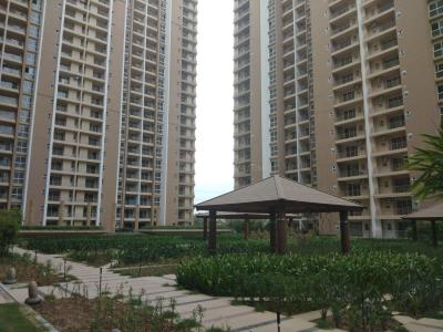 Gallery Cover Image of 1620 Sq.ft 3 BHK Apartment for rent in Sector 121 for 40000