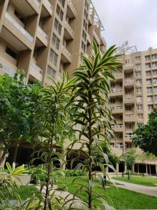 Gallery Cover Image of 1073 Sq.ft 2 BHK Apartment for buy in Pisoli for 4885000