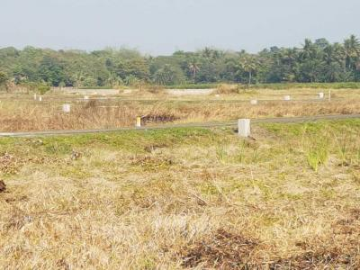 Gallery Cover Image of  Sq.ft Residential Plot for buy in Barasat for 375000
