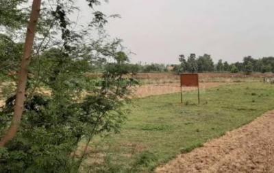 3000 Sq.ft Residential Plot for Sale in Kanchipuram, Chennai