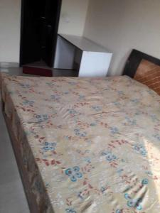 Gallery Cover Image of 350 Sq.ft 1 RK Independent Floor for rent in Sector 50 for 12500