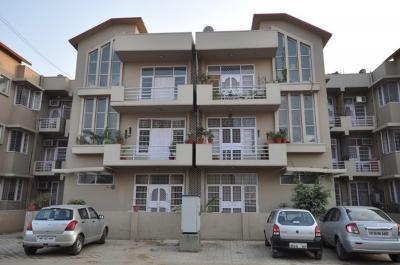 Gallery Cover Image of 1800 Sq.ft 3 BHK Independent Floor for rent in SS The Lilac, Sector 49 for 30000