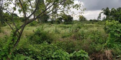1200 Sq.ft Residential Plot for Sale in Hennur, Bangalore