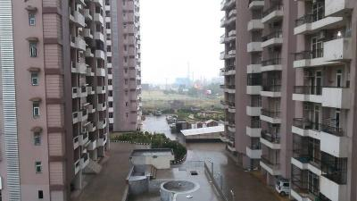 Gallery Cover Image of 1100 Sq.ft 2 BHK Apartment for rent in Amrapali Empire, Crossings Republik for 8000