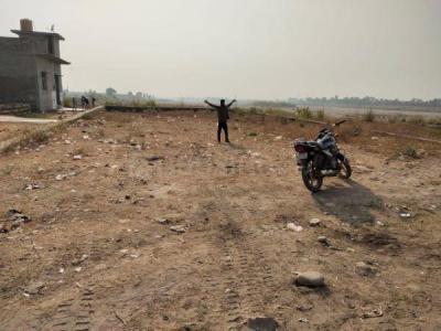 2000 Sq.ft Residential Plot for Sale in Lakkhi Bagh, Dehradun