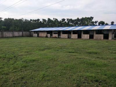 3500 Sq.ft Residential Plot for Sale in Kamalgazi, Kolkata