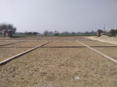1000 Sq.ft Residential Plot for Sale in Ram Nagar, Varanasi