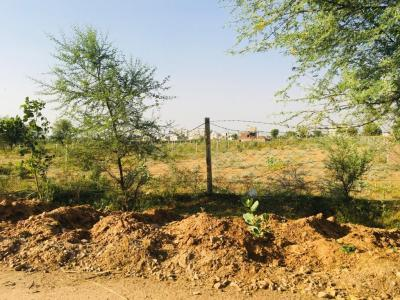 261 Sq.ft Residential Plot for Sale in Pratap Nagar, Jaipur