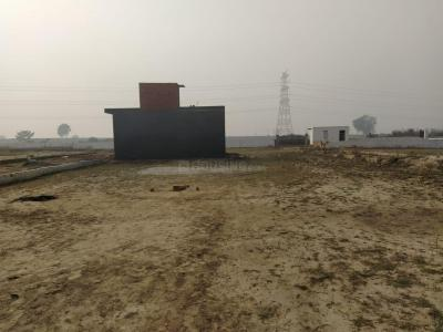 1000 Sq.ft Residential Plot for Sale in Sector 115, Noida