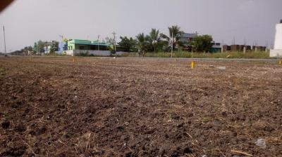 Gallery Cover Image of  Sq.ft Residential Plot for buy in Kovilpalayam for 1400000