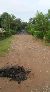 Gallery Cover Image of  Sq.ft Residential Plot for buy in Thakurpukur for 120000