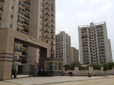 Gallery Cover Image of 610 Sq.ft 1 BHK Apartment for rent in Sector 75 for 12000