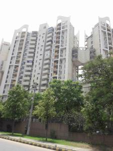 Gallery Cover Image of 3410 Sq.ft 4 BHK Apartment for buy in The South close, Sector 50 for 28500000