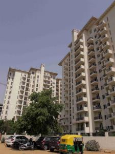 Gallery Cover Image of 1395 Sq.ft 3 BHK Apartment for rent in Sector 65 for 30000