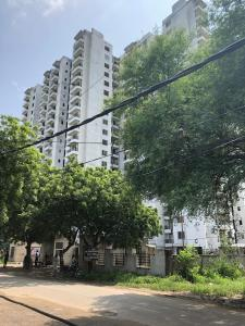 Gallery Cover Image of 1260 Sq.ft 2 BHK Apartment for rent in Sector 78 for 8000