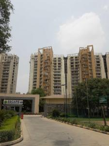 Gallery Cover Image of 3007 Sq.ft 4 BHK Apartment for buy in Unitech Escape, Sector 50 for 20500000