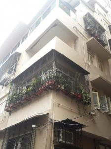 Gallery Cover Image of 375 Sq.ft 1 BHK Apartment for rent in Colaba for 40000