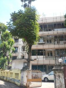 Gallery Cover Image of 550 Sq.ft 1 BHK Apartment for rent in Vashi for 16000