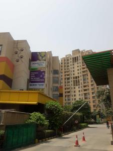 Gallery Cover Image of 1662 Sq.ft 3 BHK Apartment for rent in Sector 50 for 34000