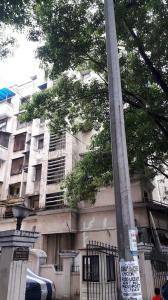 Gallery Cover Image of 650 Sq.ft 1 BHK Apartment for buy in Kharghar for 3200000